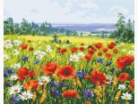 AS0546 Картина раскраска Поле цветов ArtStory