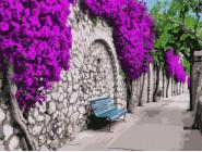 Города мира и Украины: картины без коробки Бугенвиллея в Афинах
