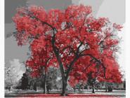Природа и пейзаж: картины без коробки Канадский ясень