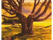 Природа и пейзаж: картины без коробки Старейшина парка