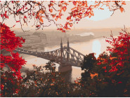 Города мира и Украины: картины без коробки Мост свободы. Будапешт