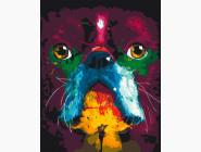 Коты и собаки: картины без коробки Французский бульдог