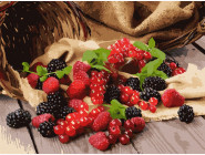 Раскраски для кухни Садовые ягоды
