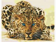 Леопард притаился