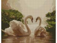 Птицы и павлины Пара лебедей