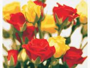 Цветы, натюрморты, букеты Жёлто-красные розы