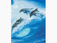 Животные и рыбки Стая дельфинов