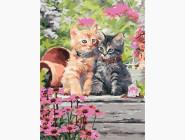 Коты и собаки: картины без коробки Котята в селе