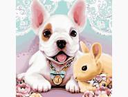 Коты и собаки: картины без коробки Собака и кролик