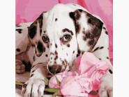 Коты и собаки: картины без коробки Далматинец