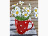 Цветы, натюрморты, букеты Ромашки в чашке