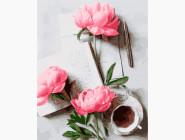 Цветы, натюрморты, букеты Вдохновляющие пионы