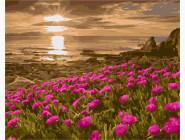 Море, морской пейзаж, корабли Красивый закат