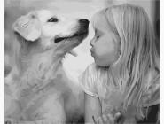 Ангелы и дети Девочка с собакой