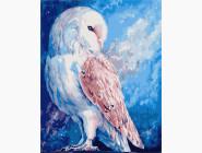 Птицы и бабочки картины по номерам Белая сова
