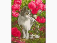 Коты и собаки Кот в розах