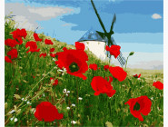 Цветы, натюрморты, букеты Мельница