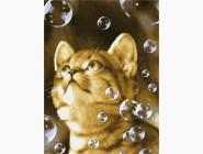 Коты и собаки: картины без коробки Мыльные пузыри
