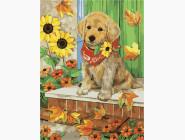 Коты и собаки: картины без коробки Осень пришла