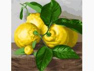 Раскраски для кухни Три лимона