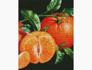 Натюрморт, фрукты и овощи Мандарины