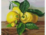 Натюрморт, фрукты и овощи Лимоны