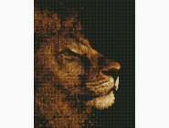Новинки алмазной вышивки Золотой лев