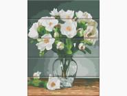 Цветы, натюрморты, букеты Белые цветы