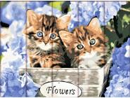 Коты и собаки Котята в корзинке
