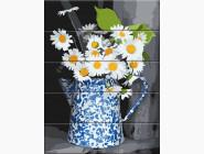 Цветы, натюрморты, букеты Ромашки в кувшине