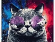 Коты и собаки: картины без коробки Космический кот