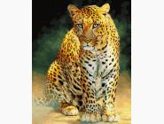 Животные: картины без коробки Леопард