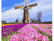 Цветы, натюрморты, букеты Голландская мельница