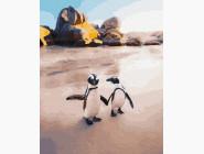 А мы пингвинчики