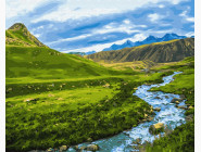 Пейзаж и природа Альпийский луг