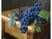Букеты и натюрморты: картины без коробки Спелая гроздь