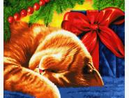 Коты и собаки Сонный кот