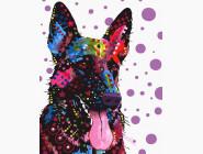 Коты и собаки: картины без коробки Красочный Рекс