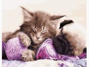 Коты и собаки: картины без коробки Бабушкины любимчики