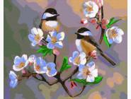 Птицы и бабочки картины по номерам Весенние синички
