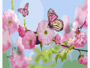 Бабочка на сакуре
