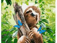 Животные: картины без коробки Счастливый ленивец