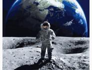 Портреты и знаменитости: раскраски без коробки На Луне