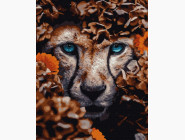 Животные: картины без коробки Взгляд гепарда