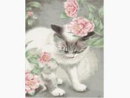 Коты и собаки: картины без коробки Кошечка в цветах