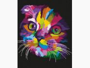Коты и собаки Радужный котенок