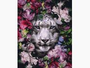 Животные: картины без коробки Снежный леопард