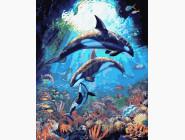 Животные: картины без коробки Подводный мир дельфинов
