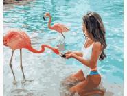 С фламинго