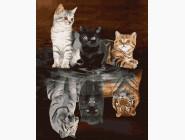 Коты и собаки: картины без коробки Души кошачих